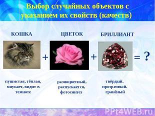 Выбор случайных объектов с указанием их свойств (качеств) пушистая, тёплая, мяук