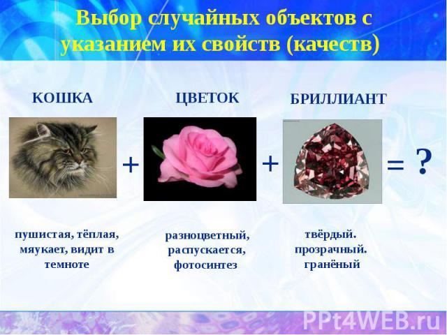 Выбор случайных объектов с указанием их свойств (качеств) пушистая, тёплая, мяукает, видит в темноте