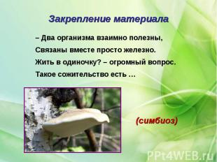 – Два организма взаимно полезны, – Два организма взаимно полезны, Связаны вместе