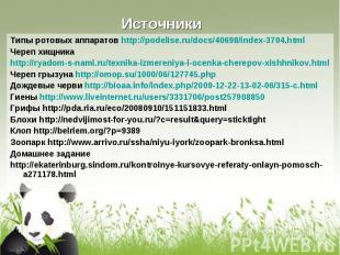 Типы ротовых аппаратов http://podelise.ru/docs/40698/index-3704.html Типы ротовы