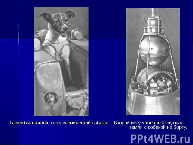 Таким был жилой отсек космической собаки. Второй искусственный спутник земли с собакой на борту. Таким был жилой отсек космической собаки. Второй искусственный спутник земли с собакой на борту.