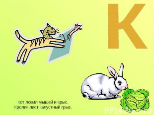 Кот ловил мышей и крыс. Кролик лист капустный грыз.