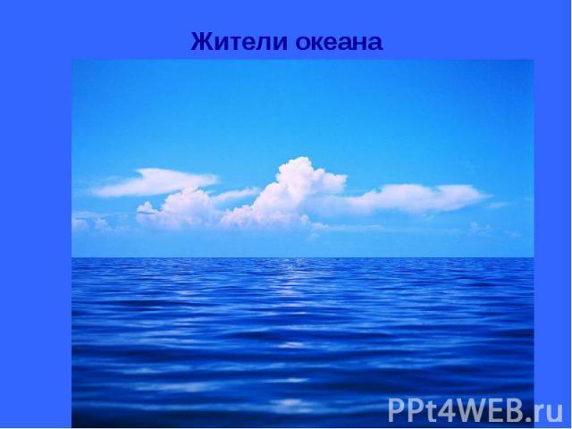 Жители океана