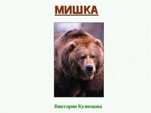 МИШКА Виктория Кузнецова