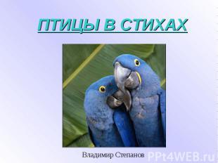 ПТИЦЫ В СТИХАХ Владимир Степанов