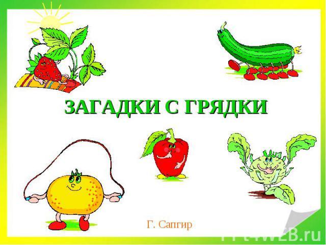 ЗАГАДКИ С ГРЯДКИ Г. Сапгир