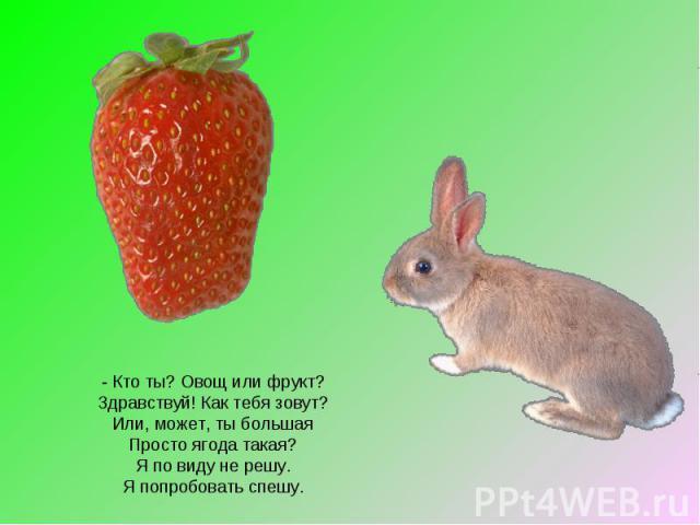 - Кто ты? Овощ или фрукт? Здравствуй! Как тебя зовут? Или, может, ты большая Просто ягода такая? Я по виду не решу. Я попробовать спешу.