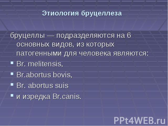 Этиология бруцеллеза бруцеллы — подразделяются на 6 основных видов, из которых патогенными для человека являются: Br. melitensis, Br.abortus bovis, Br. abortus suis и изредка Br.canis.