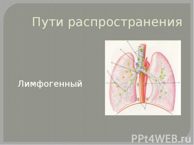 Пути распространения Лимфогенный