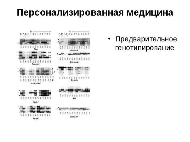 Предварительное генотипирование Предварительное генотипирование