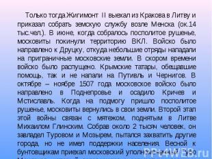 Только тогда Жигимонт II выехал из Кракова в Литву и приказал собрать земскую сл