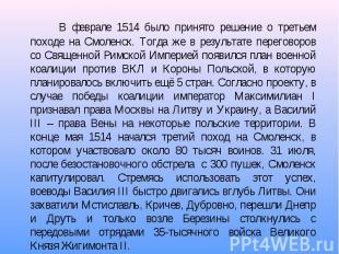 В феврале 1514 было принято решение о третьем походе на Смоленск. Тогда же в рез