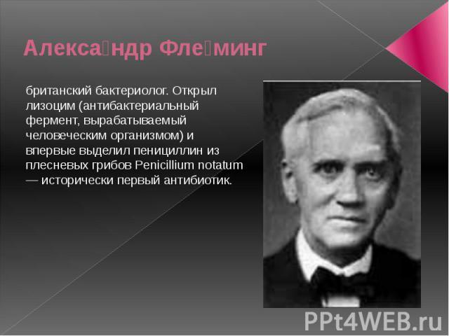 Алекса ндр Фле минг британский бактериолог. Открыл лизоцим (антибактериальный фермент, вырабатываемый человеческим организмом) и впервые выделил пенициллин из плесневых грибов Penicillium notatum — исторически первый антибиотик.
