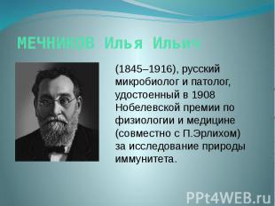 МЕЧНИКОВ Илья Ильич (1845–1916), русский микробиолог и патолог, удостоенный в 19