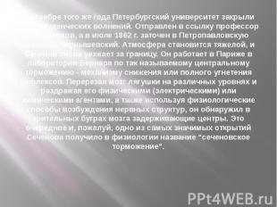 В декабре того же года Петербургский университет закрыли из-за студенческих волн
