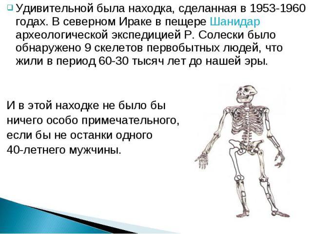 Удивительной была находка, сделанная в 1953-1960 годах. В северном Ираке в пещере Шанидар археологической экспедицией Р. Солески было обнаружено 9 скелетов первобытных людей, что жили в период 60-30 тысяч лет до нашей эры. Удивительной была находка,…
