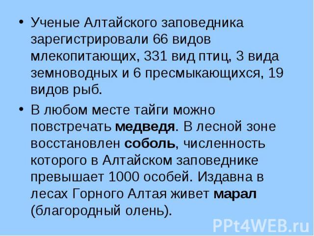 Ученые Алтайского заповедника зарегистрировали 66 видов млекопитающих, 331 вид птиц, 3 вида земноводных и 6 пресмыкающихся, 19 видов рыб. Ученые Алтайского заповедника зарегистрировали 66 видов млекопитающих, 331 вид птиц, 3 вида земноводных и 6 пре…