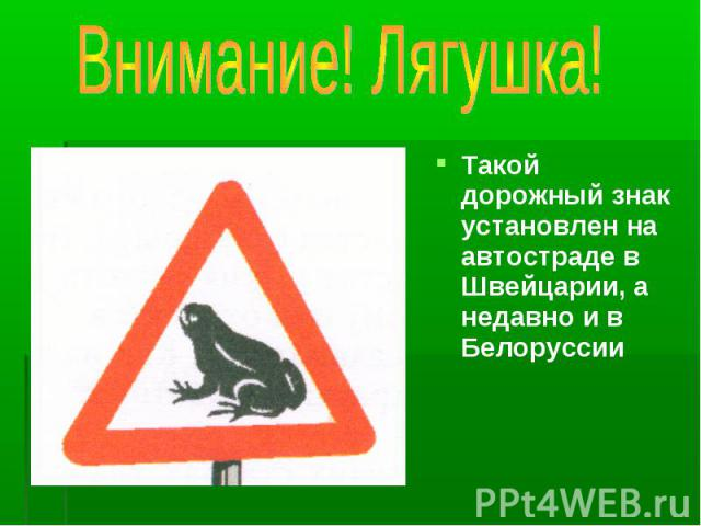 Такой дорожный знак установлен на автостраде в Швейцарии, а недавно и в Белоруссии Такой дорожный знак установлен на автостраде в Швейцарии, а недавно и в Белоруссии