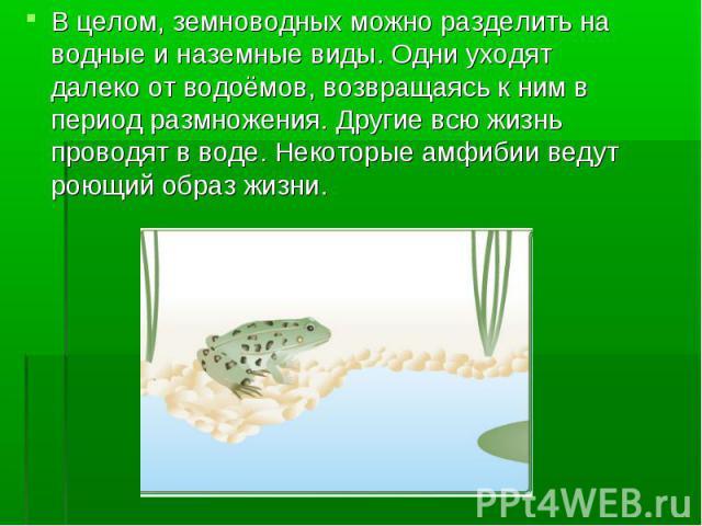 В целом, земноводных можно разделить на водные и наземные виды. Одни уходят далеко от водоёмов, возвращаясь к ним в период размножения. Другие всю жизнь проводят в воде. Некоторые амфибии ведут роющий образ жизни. В целом, земноводных можно разделит…