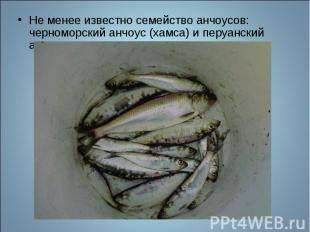 Не менее известно семейство анчоусов: черноморский анчоус (хамса) и перуанский а
