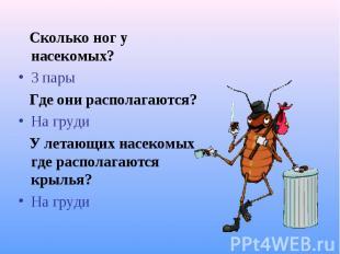 Сколько ног у насекомых? Сколько ног у насекомых? 3 пары Где они располагаются?