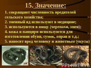 15. Значение: