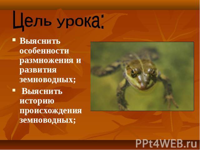 Выяснить особенности размножения и развития земноводных; Выяснить особенности размножения и развития земноводных; Выяснить историю происхождения земноводных;