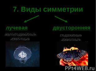 7. Виды симметрии