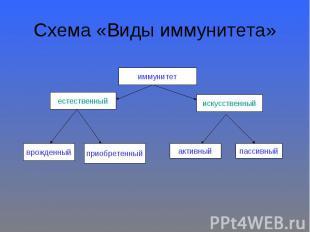 Схема «Виды иммунитета»
