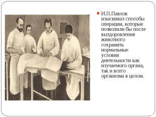 И.П.Павлов изыскивал способы операции, которые позволили бы после выздоровления