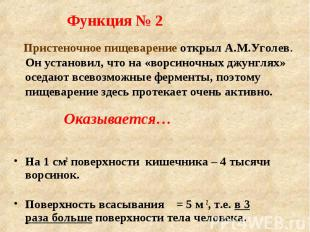 Функция № 2 Пристеночное пищеварение открыл А.М.Уголев. Он установил, что на «во