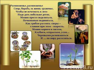 Размноженье, размноженье Размноженье, размноженье Спор, борьба, за жизнь сражень