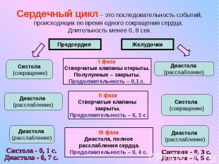 Сердечный цикл – это последовательность событий, происходящих во время одного со