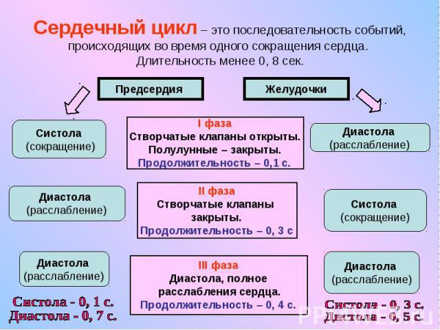Сердечный цикл – это последовательность событий, происходящих во время одного сокращения сердца. Длительность менее 0, 8 сек.