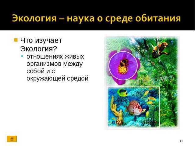 Что изучает Экология? Что изучает Экология? отношениях живых организмов между собой и с окружающей средой