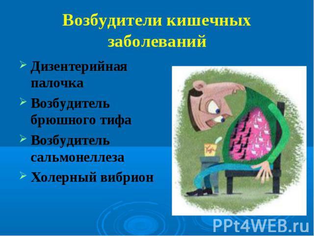 Дизентерийная палочка Дизентерийная палочка Возбудитель брюшного тифа Возбудитель сальмонеллеза Холерный вибрион