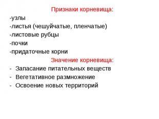 Признаки корневища: Признаки корневища: -узлы -листья (чешуйчатые, пленчатые) -л