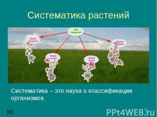 Систематика – это наука о классификации организмов. Систематика – это наука о кл
