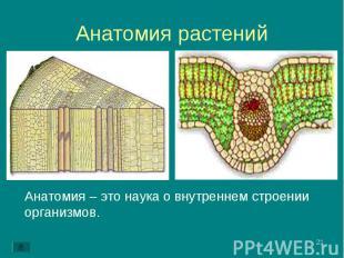 Анатомия – это наука о внутреннем строении организмов. Анатомия – это наука о вн
