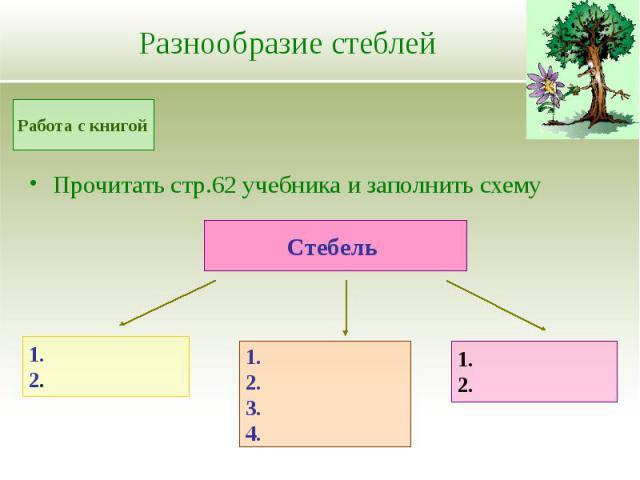 Прочитать стр.62 учебника и заполнить схему Прочитать стр.62 учебника и заполнить схему