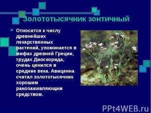 Относится к числу древнейших лекарственных растений, упоминается в мифах древней
