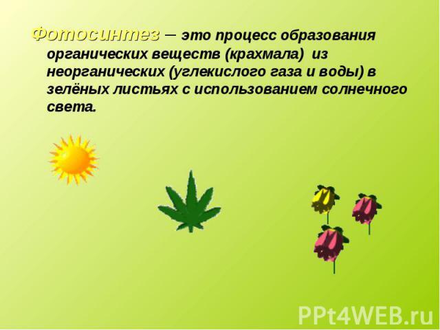 Фотосинтез – это процесс образования органических веществ (крахмала) из неорганических (углекислого газа и воды) в зелёных листьях с использованием солнечного света. Фотосинтез – это процесс образования органических веществ (крахмала) из неорганичес…