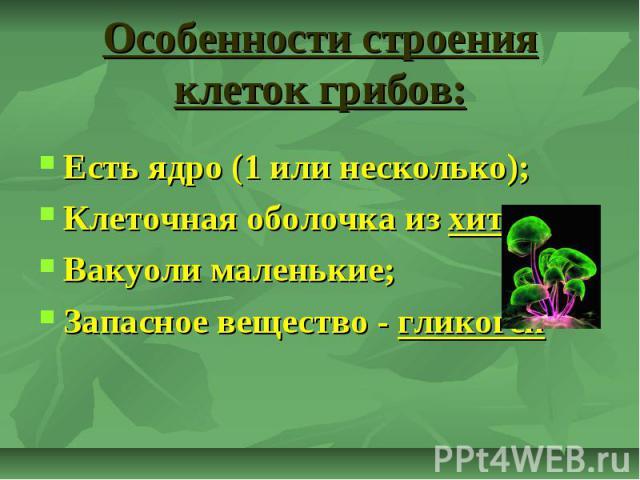 Особенности строения клеток грибов: Есть ядро (1 или несколько); Клеточная оболочка из хитина; Вакуоли маленькие; Запасное вещество - гликоген