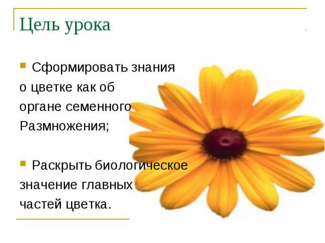 Сформировать знания Сформировать знания о цветке как об органе семенного Размножения; Раскрыть биологическое значение главных частей цветка.