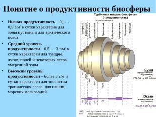 Низкая продуктивность – 0,1…0,5 г/м2 в сутки характерна для зоны пустынь и для а