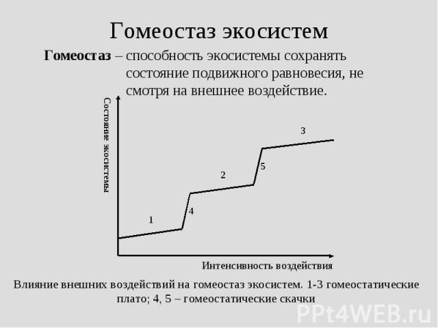 Гомеостаз – способность экосистемы сохранять состояние подвижного равновесия, не смотря на внешнее воздействие. Гомеостаз – способность экосистемы сохранять состояние подвижного равновесия, не смотря на внешнее воздействие.