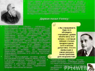 Теория Дарвина объясняла происхождение видов, а человек - один из видов животног