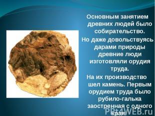 Основным занятием древних людей было собирательство. Но даже довольствуясь дарам