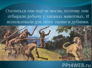 Охотиться они ещё не могли, поэтому они отбирали добычу у хищных животных. И исп