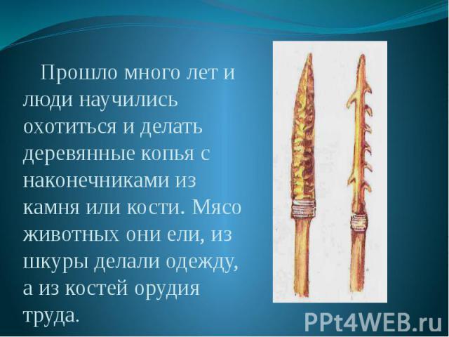 Прошло много лет и люди научились охотиться и делать деревянные копья с наконечниками из камня или кости. Мясо животных они ели, из шкуры делали одежду, а из костей орудия труда. Прошло много лет и люди научились охотиться и делать деревянные копья …